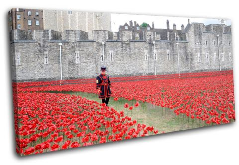 Tower of London Poppies City - 13-2238(00B)-SG21-LO